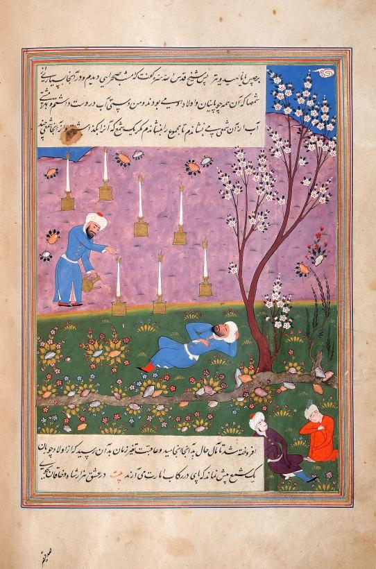 Safi al-Din Dreaming.jpg